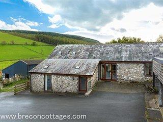 Bach Cottage (BACHC), Llanwrthwl