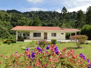 Las Plumas Holiday Home Rentals HAWK - Paso Ancho, Volcan, Chiriqui Highlands