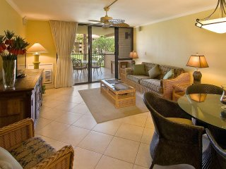 spacious living room and private lanai