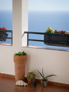 Balcony Flower Pot and Hanging Flowers Detail
