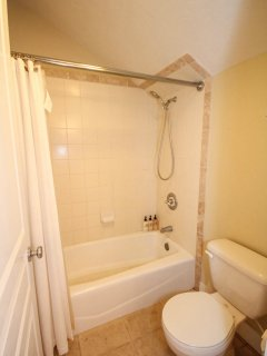 Guest Bath in Loft