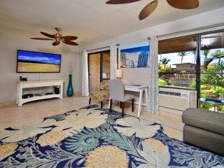 SUGAR BEACH RETREAT: Ocean View, Remodeled, AC, King Bed, < 200 Steps to Beach!!