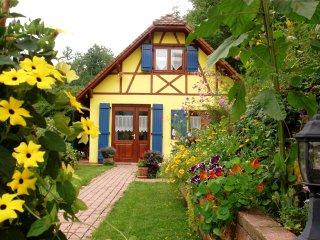 Notre Gite en Alsace en Juillet
