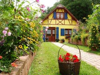 Notre Gite en Alsace en Août