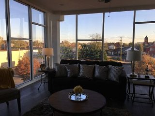 Lux Top Floor Condo 2 Bed/2 Bth with City Views- #415