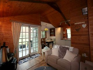 2 bedroom log cabin on Plas Dolguog Hotel grounds, Machynlleth