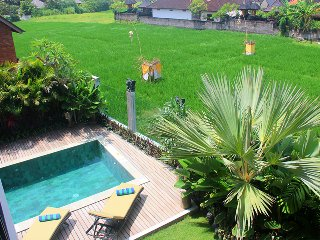 Pool looking out to ricefield