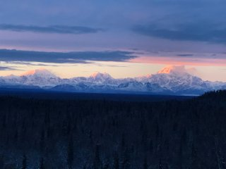 Denali View Guesthouse and Cabins
