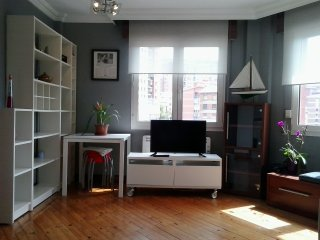 Apartamento en el corazón de Bilbao: Don Diego Etxea (NºReg. E-BI 311)