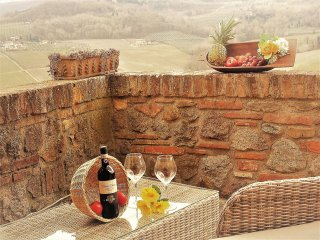 Amazing view of Tuscany hills - La Terrazza