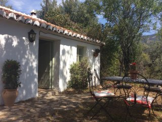 Beautiful casita in the olive groves with pool for summer and hot tub for winter