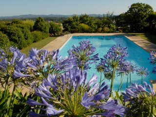 Quinta de Santa Teresinha - Villa with salt water swimming pool and gardens, Serta