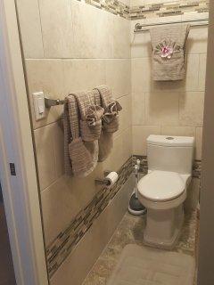 Master Bath (Shower + Tub)