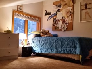 Twin Trundle Bedroom in Large East Vail Condo