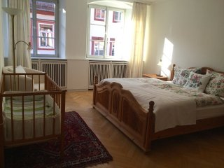 Comfortable cosy 2 bedroom apartment in the Heart of Heidelberg