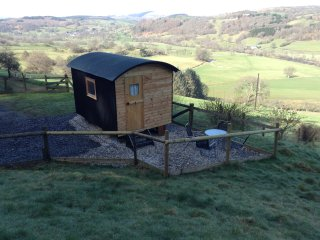 Shepherds Hut... Megan at Tyn-y-Fron