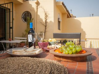 Spacious Botanic Duplex Terrace apartment in Santa Cruz – Catedral with WiFi