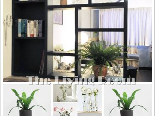 Woodland Georgetown Penang Apartment For Rent