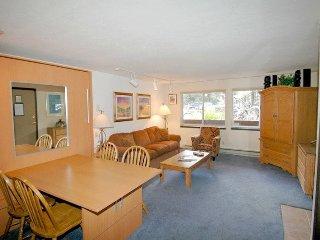 Silverglo Condominiums Unit 104, Aspen