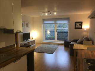 Modern, sunny apartment in great location near Chester centre and train station