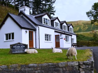 Esgair Wen -  4 Star Wales Tourist Board countryside cottage with character