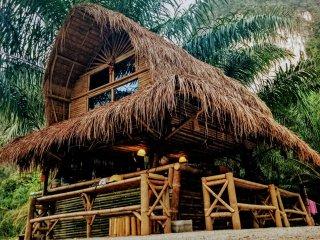 Aoluek paradise. Room 1