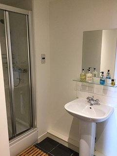 Good sized Ensuite with shower cubicle