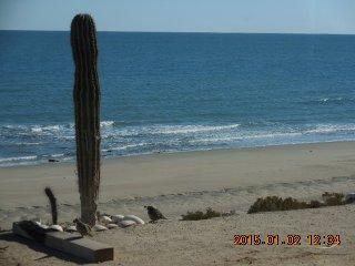 Casa Baja - San Felipe Beach Rentals