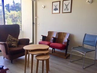Maravillo y Acogedor Departamento en Barrio Lastarria / Wonderful and cozy apt