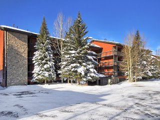 Mountainside Condo 229E