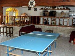 Modern one bedroom apartment in Barbat
