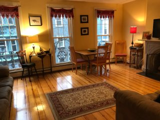 Centrally located beautiful Boston condo