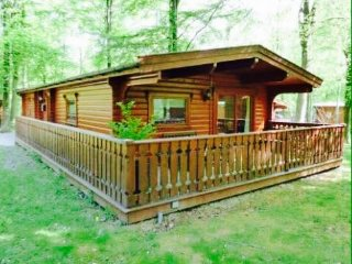 Larch Lodge,20 kenwick Woods,Louth, Lincs, with use of pool/spa at kenwick hotel
