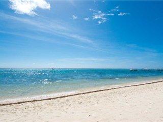 Caribbean Paradise #12