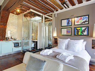 Luxury Large Studio rental, Ile Saint Louis views, Paris