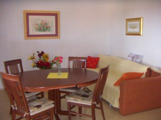 Comfortable four person apartment in Segent Donji