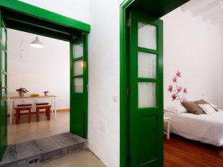 Green House in San Bartolome 88