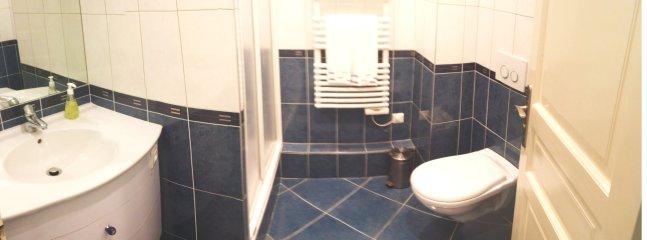 Salle d'eau : lavabo, douche, wc, radiateur porte-serviettes