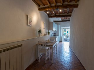 1 bedroom apartment with sofa bed in the anfiteatro square. wifi. max 3 people