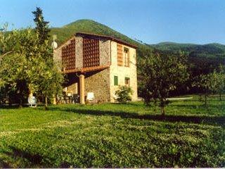 Capannori - 19001