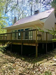 Captivating Cabin located on wooded lot and short stroll to lake and dock!