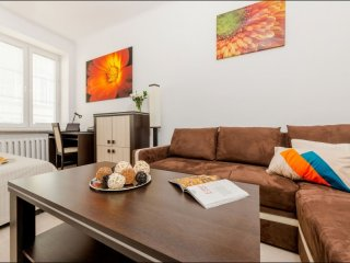 Plac Bankowy 1 apartment in Stare Miasto with WiFi.