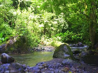 Get your hiking shoes and take the trail to La Palma river