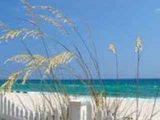 Come experience  luxury on the green gulf!