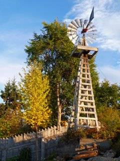 The windmill and water garden.