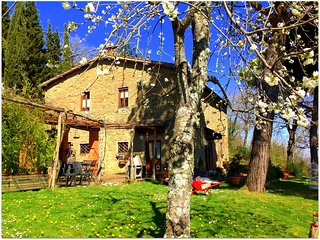 Tuscan farmhouse with private pool in Chianti, Lucolena