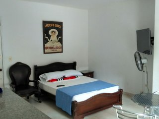 Comfortably Furnished Studio Apartment 1