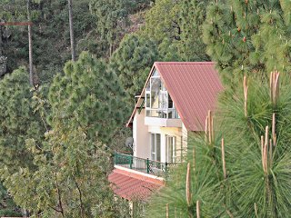 Five Divine Woods, 4 Bedroom Private Luxury Hill Villa with cook, Kasauli Hills