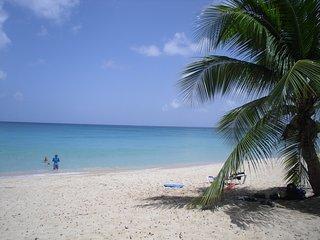 Ferienhaus in karibischem Dorf