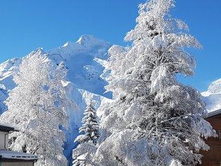 Les 2 Alpes Le Venosc K